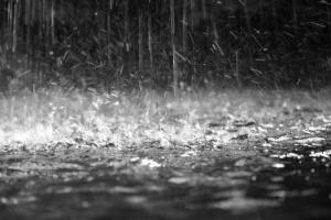 ¿Qué causa el olor a tierra mojada?